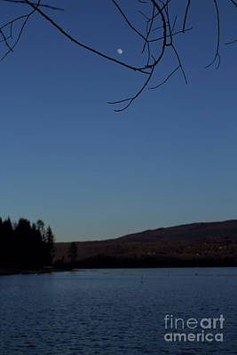 Photograph - A Spring Moon Rising by Victor K