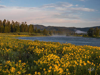 Yellowstone Photograph - A Spring Morning by Leland D Howard