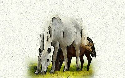 Photograph - A Stallion With Mare by Studio Artist