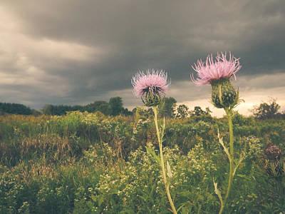 Photograph - A Storm Approaches by Viviana  Nadowski