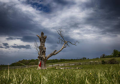 Photograph - A Storm Is Brewing by Amber Kresge