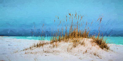 Photograph - A Stormy Day In South Walton by JC Findley