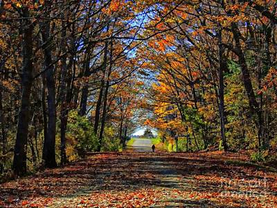 A Stroll Through Autumn Colors Art Print