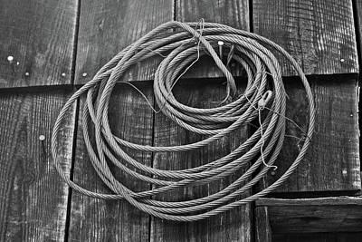 A Study Of Wire In Gray Print by Douglas Barnett