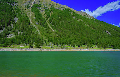 Suggestive Photograph - A Suggestive Green Mountain Lake Along A Slope Covered With Pine by Susanna Mattioda
