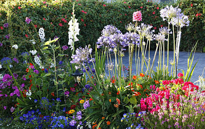 A Summer Garden Art Print by Marilyn Hunt