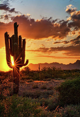 Photograph - A Summer Sonoran Evening  by Saija Lehtonen