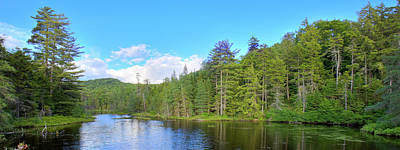 Photograph - A Summers Day On Nicks Lake by David Patterson