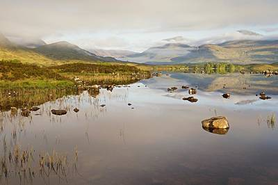 Photograph - A Summers Morning On Rannoch Moor by Stephen Taylor