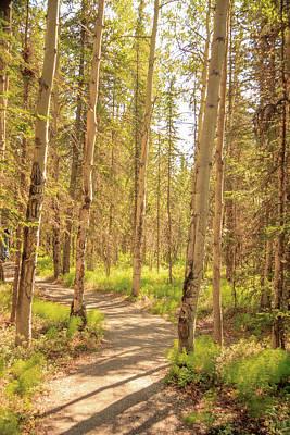 Photograph - A Sunny Day Hiking In Denali by Joni Eskridge