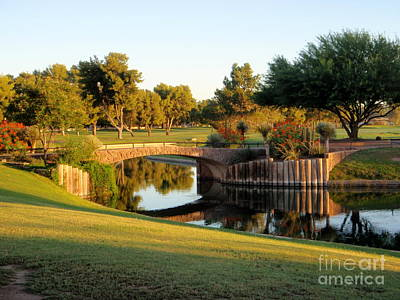 Photograph - A Sunny Morning At The Pond by Mary Deal