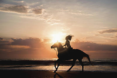 Photograph - A Sunrise Gallop by Fast Horse Photography