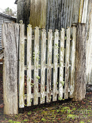 Photograph - A Gate From The Past by Lexa Harpell