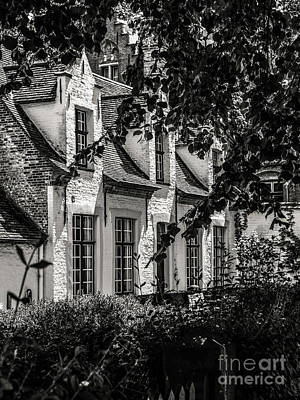 Photograph - A Sweet Home by Lexa Harpell