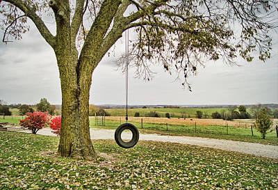 Photograph - A Swing With A View by Cricket Hackmann