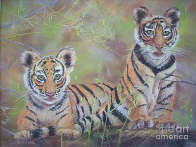 Two Tailed Drawing - A Tail For Two Tigers by Jackie Hill