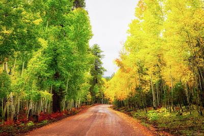 Photograph - A Tale Of Two Seasons by Rick Furmanek