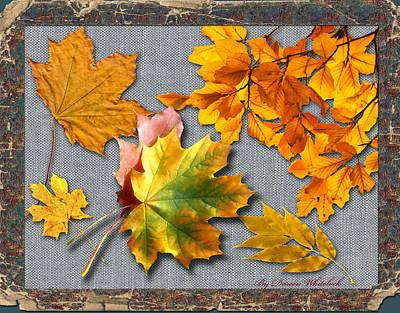 Digital Art - A Taste Of Fall by Doreen Whitelock