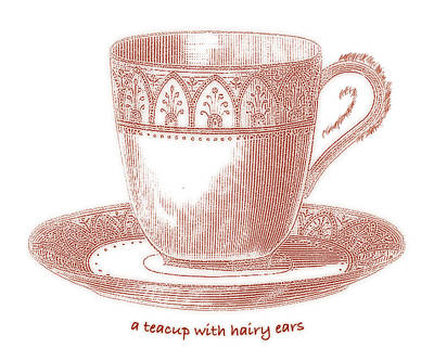 Whimsy Mixed Media - A Teacup With Hairy Ears by Frank Tschakert