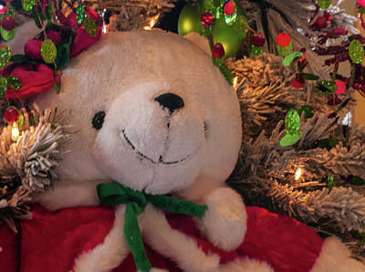 Photograph - A Teddy Christmas by Stewart Helberg