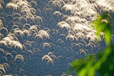 A Thousand Suns - Ring Of Fire Eclipse 2012 Art Print by Bill Owen