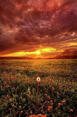 Unity Photograph - A Thousand Years From Yesterday by Phil Koch