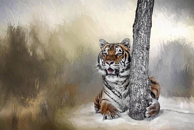 Photograph - A Tiger And His Tree by Wes and Dotty Weber