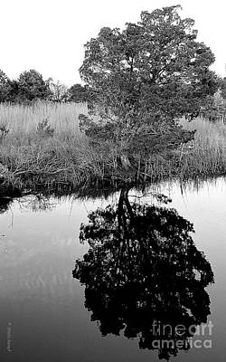 Photograph - A Time To Reflect - Black And White by Shelia Kempf