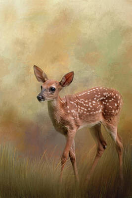 Photograph - A Tiny Bit Of Joy Deer Art by Jai Johnson
