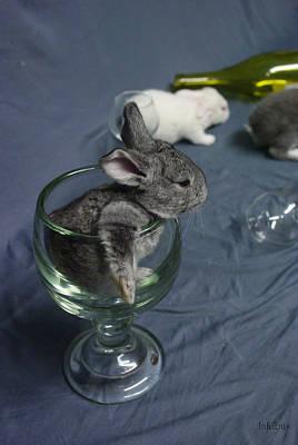 Photograph - A Toast To Easter by Alana  Schmitt