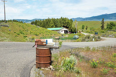 Photograph - Country Mail Box by Tom Cochran