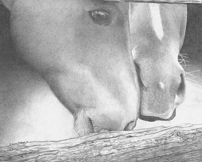 Wild Horse Drawing - A Touch In Time by Laura  Nickerson