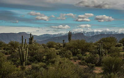 Photograph - A Touch Of Winter In Arizona  by Saija Lehtonen