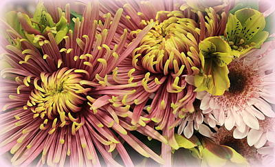 Photograph - A Touch Of Yellow On Pink Mums by Dora Sofia Caputo Photographic Art and Design