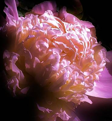 Photograph - A Touch Of Light by Bruce Bley