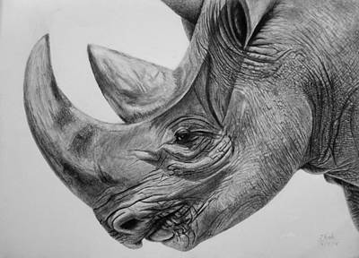 Drawing - Rhinoceros - A Peaceful Giant by Vishvesh Tadsare