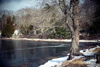 Photograph - A Trace Of Snow by John Rizzuto