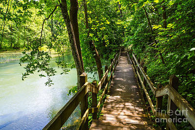 Photograph - A Tranquil Hike by Jennifer White