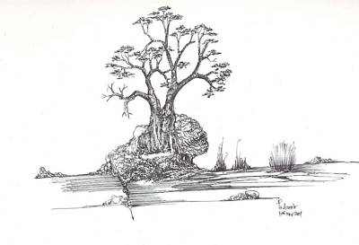 A Tree A Rock And Some Grass Art Print by Padamvir Singh