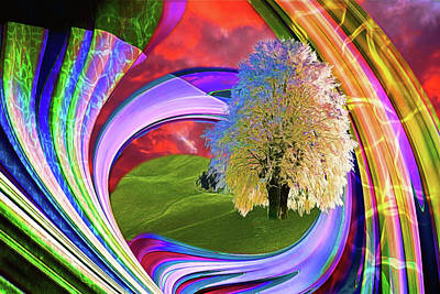 Digital Art - A Tree Grows by John Haldane