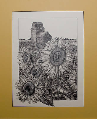 Clear Sky Drawing - A Tribute To The Sun by Thomas  Ferguson