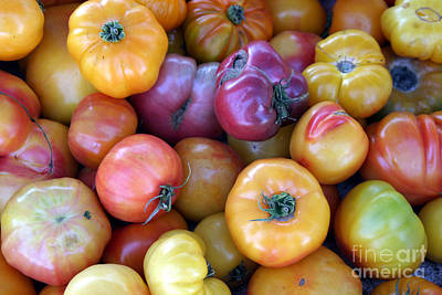 A Trip Through The Farmers Market Featuring Heirloom Tomatoes. Art Print by Michael Ledray