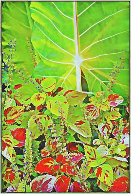 Digital Art - A Tropical Bouquet by Mindy Newman