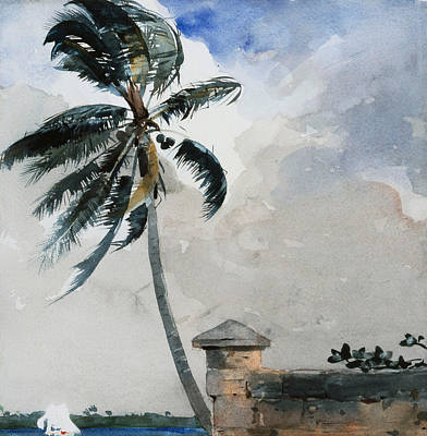 Caribbean Sea Painting - A Tropical Breeze by Winslow Homer