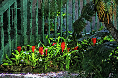 Epiphytic Bromeliads Photograph - A Tropical Florida Landscape by HH Photography of Florida