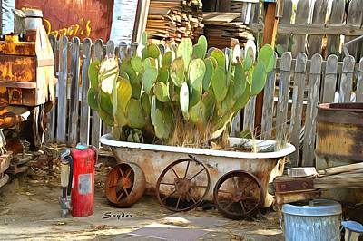 Photograph - A Tub Cactus Cuyama Valley California by Floyd Snyder