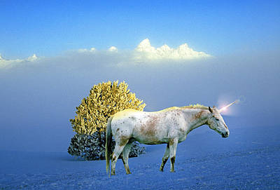 Unicorn Photograph - A Unicorn Named Snowstorm by Buddy Mays