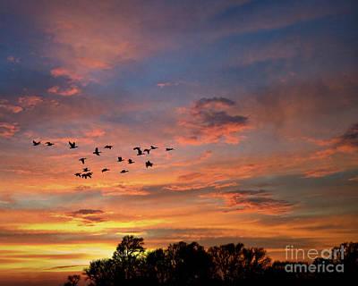 Photograph - A V Takes Shape At Sunrise by Kathy M Krause