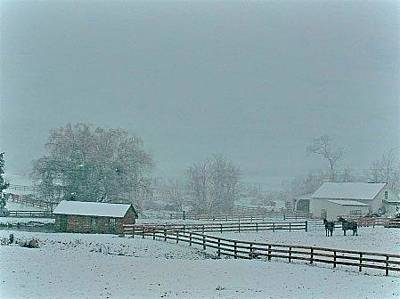 Photograph - A Valley Snow by Tracy Rice Frame Of Mind