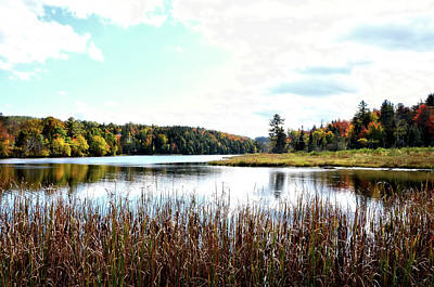 Photograph - A Vermont Waterway by Rena Trepanier